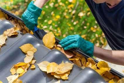 Tipps zur Dachrinnenreinigung