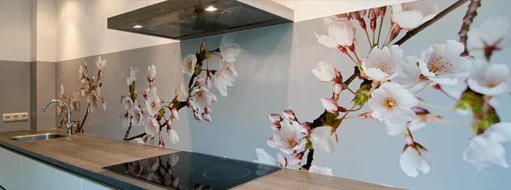 Küchenrückwand aus Acrylglas - praktisch, stilvoll und bezahlbar ...