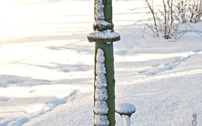 Gartenteich, Wasserhahn & Co: Woran Du bei Frost denken solltest