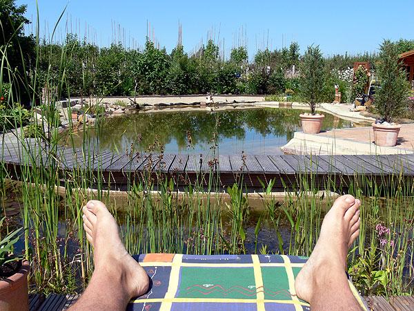 Blick vom Holzdeck über den Teich